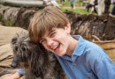 Here's how you can watch every episode of 'The Durrells' for FREE!