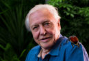 David Attenborough has a second new BBC nature series coming this year!
